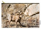 Majestic Bighorn Carry-all Pouch