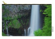 Majestic Kegon Falls Carry-all Pouch