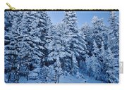 Majestic Winter Wonderland Carry-all Pouch