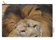 Male African Lion Carry-all Pouch