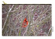 Male Cardinal Cold Day 2 Carry-all Pouch