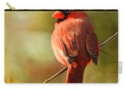 Male Cardinal In The Sun - Digital Paint Carry-all Pouch