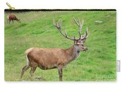 Male Deer On Field Carry-all Pouch