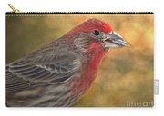 Male Finch With Seed Carry-all Pouch
