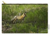 Male Fox   #3521 Carry-all Pouch