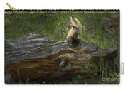 Male Fox   #3575 Carry-all Pouch