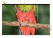 Male Golden-headed Quetzal Carry-all Pouch