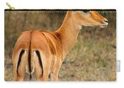 Male Impala With Horns Carry-all Pouch