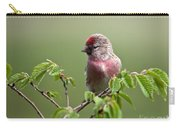 Male Lesser Redpoll  Carduelis Cabaret Carry-all Pouch