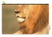 Male Lion Carry-all Pouch
