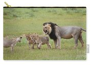 Male Lion Teaches Cubs Carry-all Pouch