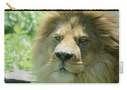 Male Lion Up Close Carry-all Pouch