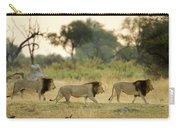 Male Lions At Dawn, Moremi Game Carry-all Pouch