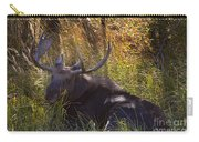 Male Moose   #3865 Carry-all Pouch