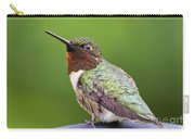 Male Ruby Throated Hummingbird Carry-all Pouch