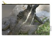 Male Striped Basilisk Carry-all Pouch by Heiko Koehrer-Wagner