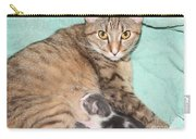 Mama Cat And Her Kittens Carry-all Pouch