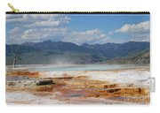 Mammoth Views Carry-all Pouch