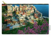 Manarola From Above Carry-all Pouch