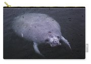 Manatee In The Rain Carry-all Pouch