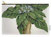 Mandragora Officinarum Carry-all Pouch by LFJ Hoquart