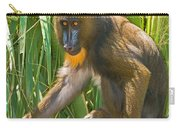 Mandrill Female Carry-all Pouch