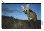Maned Wolf Hunting At Dusk Brazil Carry-all Pouch