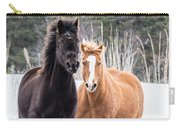 Manes Flying Carry-all Pouch