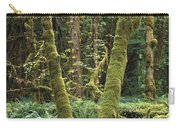 Maple Glade Quinault Rain Forest Carry-all Pouch