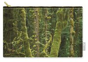 Maple Glade Quinault Rainforest Carry-all Pouch