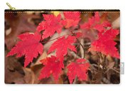 Maple Leaf Palette Carry-all Pouch