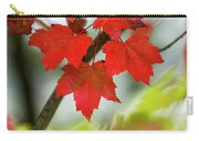 Maple Leaves Show Off Their Autumn Hues Carry-all Pouch