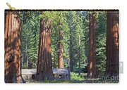 Giant Sequoias Mariposa Grove Carry-all Pouch
