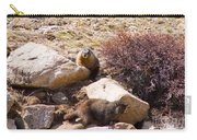 Marmots On Mount Evans Carry-all Pouch