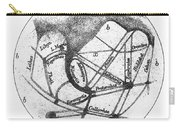 Mars: Schiaparelli, 1877 Carry-all Pouch