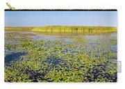 Marsh At Edge Of Lake Okeechobee Carry-all Pouch