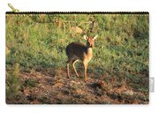 Masai Mara Dikdik Deer Carry-all Pouch