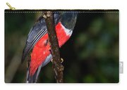 Masked Trogon With Moth Carry-all Pouch