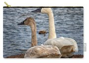 Mating Pair Carry-all Pouch