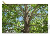 Mature Sycamore Carry-all Pouch