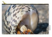 Mediterranean Hermit Crab Carry-all Pouch