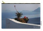 Mediterranean Views Carry-all Pouch