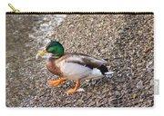 Meet Mr. Quack - A Mallard Duck Carry-all Pouch