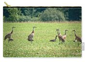 Meeting Of The Cranes Carry-all Pouch