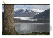 Mendenhall Glacier In Late Fall Carry-all Pouch