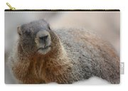 Merry Marmot Carry-all Pouch