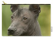 Mexican Hairless Dog Carry-all Pouch