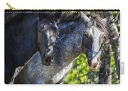 Mica And Malpais - Pryor Mustangs Carry-all Pouch