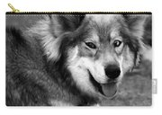 Miley The Husky With Blue And Brown Eyes - Black And White Carry-all Pouch by Doc Braham