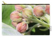 Milkweed Before Bloom Carry-all Pouch
